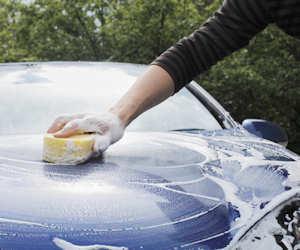 Cómo quitar la sangre de pájaro seca del capó del coche